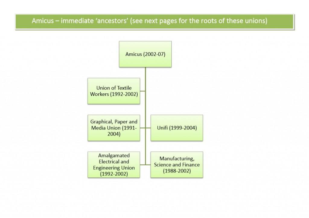 Amicus family tree